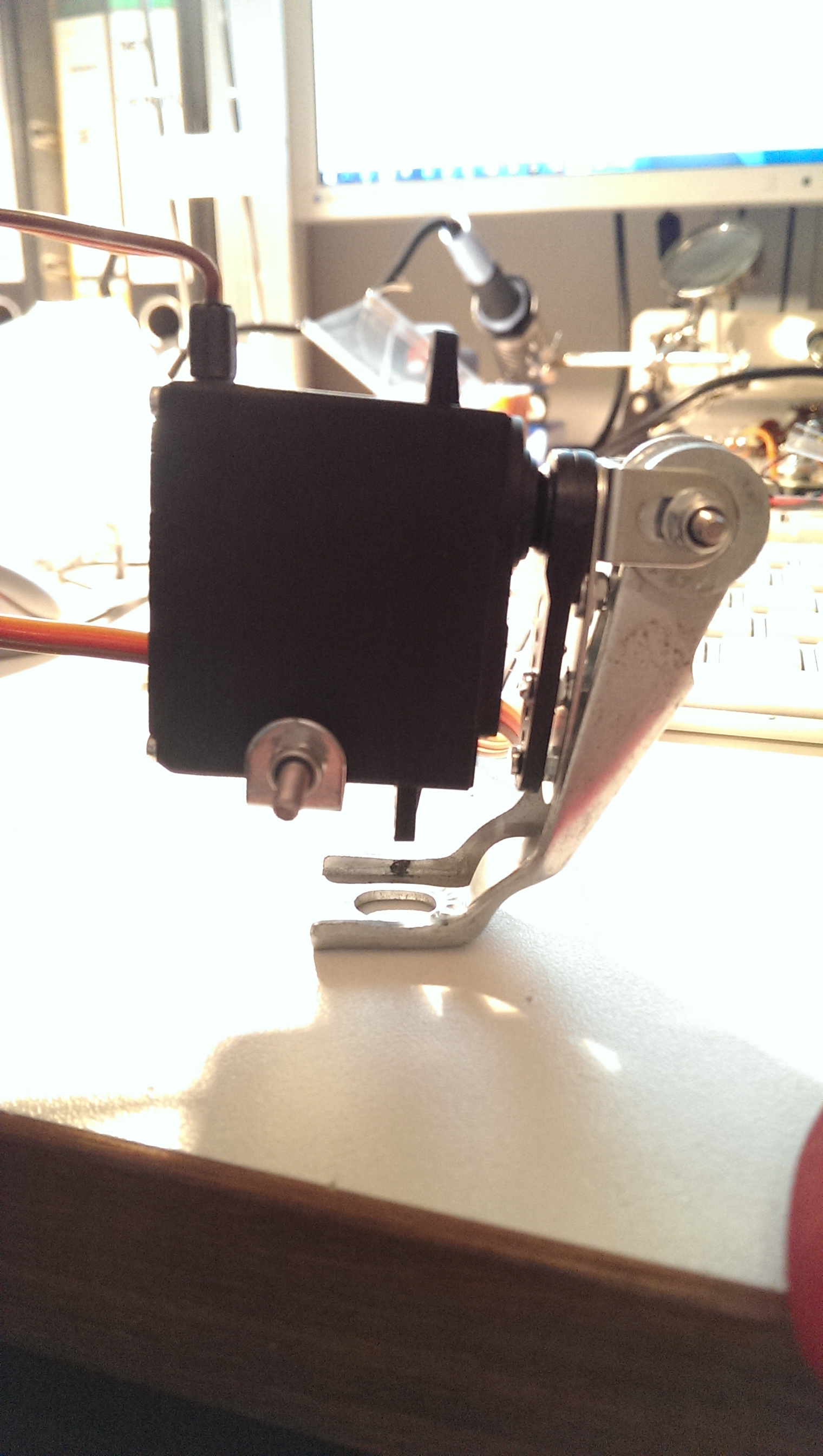 lower servo for the back